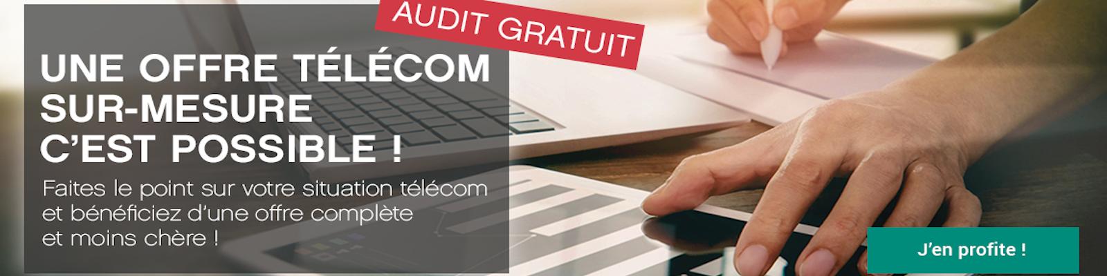 Audit téléphonie mobile pro